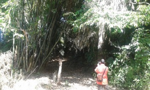 Pintu masuk makam Buniwangi